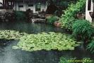 Çin Fotoğrafları_5