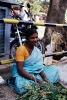 Hindistan Fotoğrafları_12