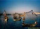 Hindistan Fotoğrafları_5