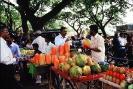 Hindistan Fotoğrafları_9